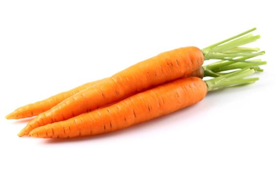 Морковь от Знатного Фермера
