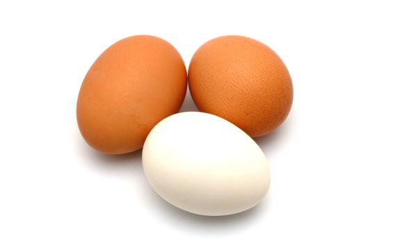 Яйца куриные от Андрея Конюхова, десяток.
