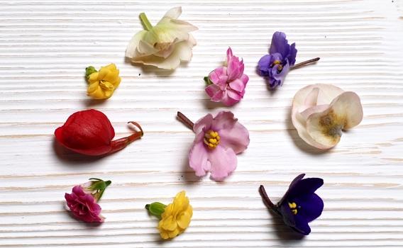 Цветы пищевые (ассорти) от Никиты Комбеева, 10 шт.