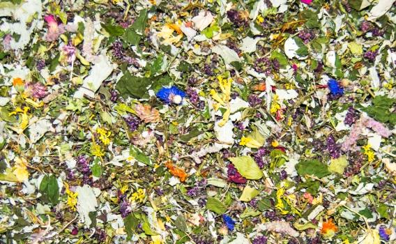 Чай травяной общеукрепляющий от Валерия Дунькова 50 гр.