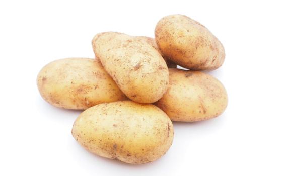 Картофель от Знатного Фермера